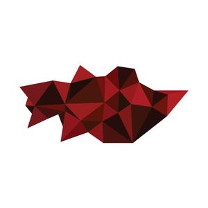 Startup Shell
